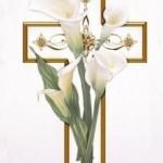 lillie-212x3001
